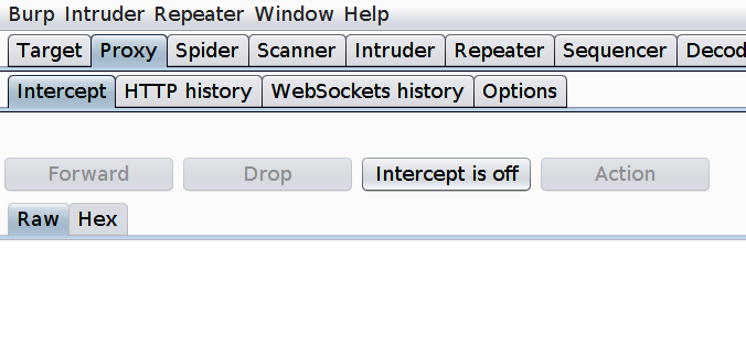 Burp Suite intercept tab