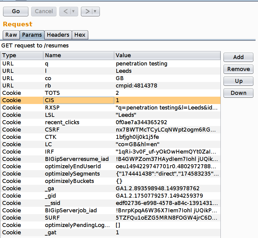 Burp suite repeater parameters tab