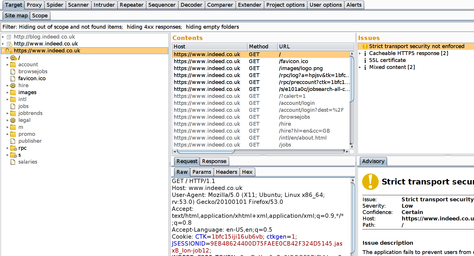 Burp suite target scope